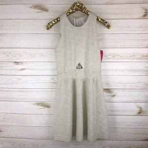 NWT Xhilaration Silver & Ivory Embossed Dress